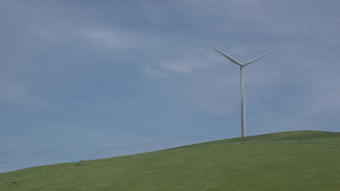 Turbine on a green hill in a Californian wind farm Live Action