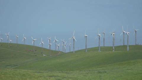 Two dozen turbines in a Californian wind farm Footage
