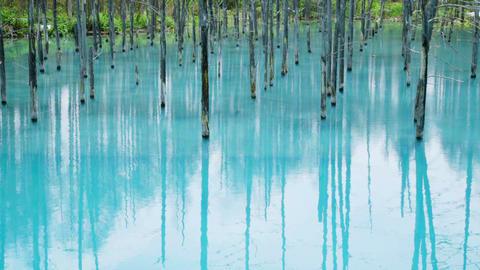 Blue Pond(Aoiike),Biei00001 Footage
