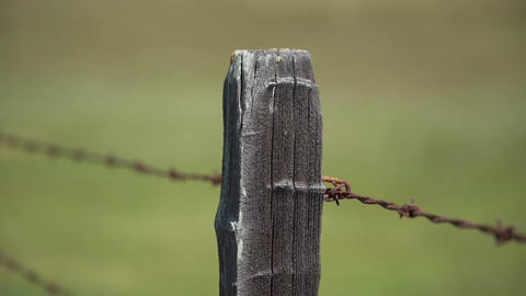 Shallow DOF pan shot of an old barbed wire fence Footage