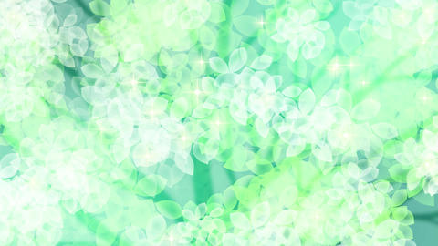 new leaves fresh green background3 Animation
