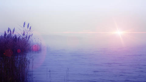 Foggy morning at moody sea with cloudy sky and gloomy sun Footage