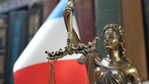 Statue of Lady Justice with Bookshelf with Books and France Flag Background Footage