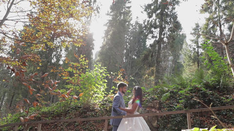 Groom with bride near mountain hills in the forest. Wedding couple. Sunbeams Live Action