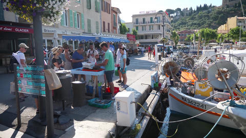 Cassis harbour fisherman selling his catch Live Action