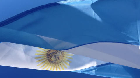 Argentina Flag South America Live Action