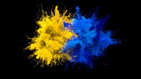 Yellow Blue Color Burst - Multiple colorful smoke explosions fluid alpha matte Animation
