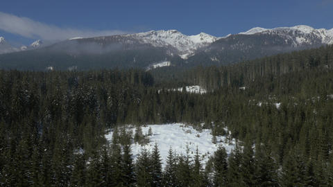 Aerial - Snowy plain plateau in forest and mountains Live Action
