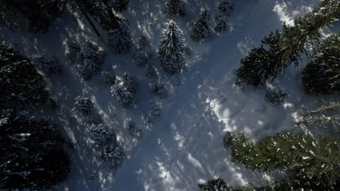 Aerial - Rotating above empty, snowy road in forest Live Action