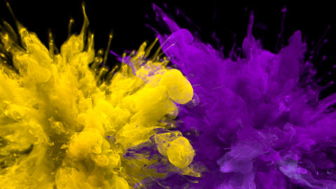 Yellow Purple Color Burst - Multiple colorful smoke explosions fluid alpha matte Animation