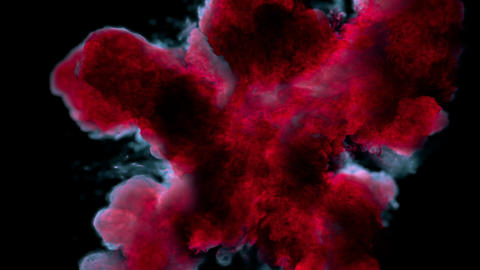 Red Pink Color Burst colorful smoke powder explosion fluid ink particles alpha Animation