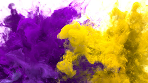Purple Yellow Color Burst - Multiple colorful smoke explosions fluid alpha matte Animation