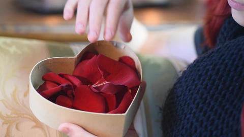Valentine Gift. Young Girl opening heart gift box with rose petals Live Action