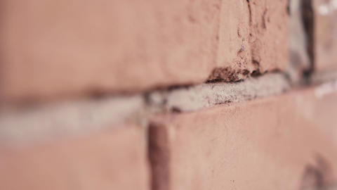Red brick texture closeup in slow motion GIF