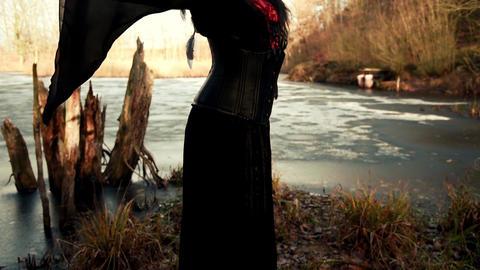 Beautyful Viking woman standing on frozen sea Live Action