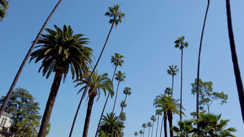 Driving through the streets of Beverly Hills - travel photography Footage