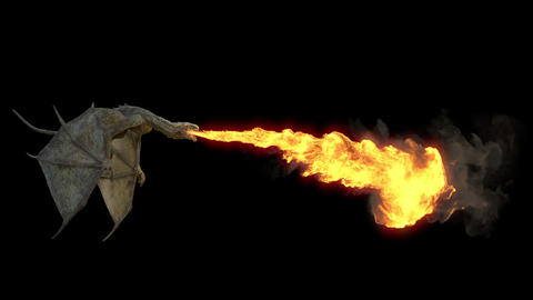 The Dragon flying and breathing flame. Seamless loop with Alpha channel Animation