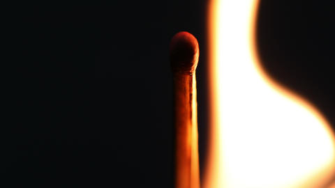 Macro fire burning on matchstick, studio shot isolated on black background Footage