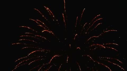 Firework Animation