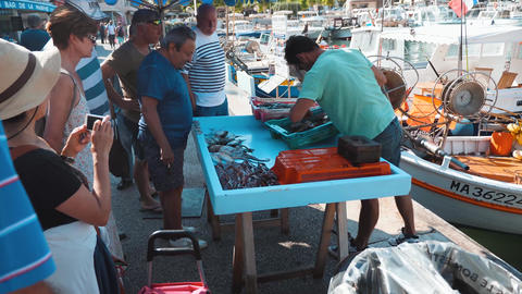 Cassis harbour fisherman selling his catch wharf GIF