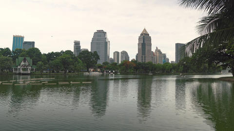 City life: the business district and a green park with a lake for public Live Action