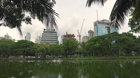 Construction cranes are building skyscrapers. View from the green city Park on Live Action