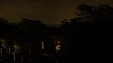 bild forest night GIF