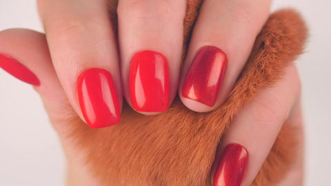 Woman's hands with red manicure hold red fluffy ball Footage