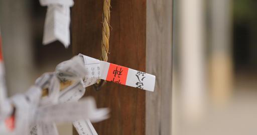 Oracles at Oomiya hachiman shrine in Tokyo Live Action