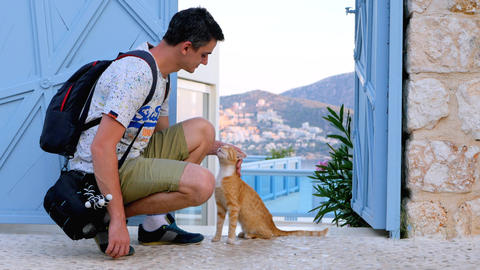 Man stroking red cat on the street Live Action