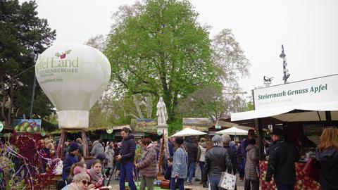 Vienna, Austria Steiermarkdorf Styrian Spring Festival at Rathausplatz GIF