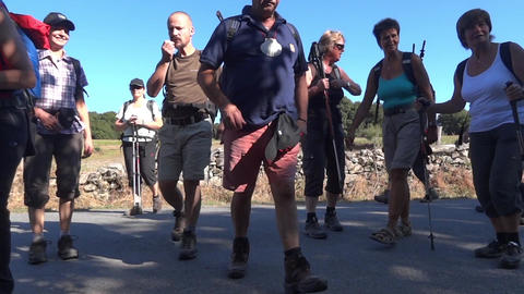 Group of tourists walking on a road suddenly stop when they discovered something Footage