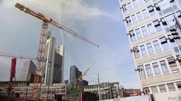 Construction Cranes and Metropolis Skyscrapers Live Action