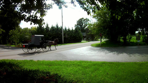Amish Transportation Type Horse and Buggy Pick Up Footage