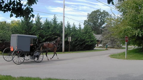 Amish Transportation Type Horse and Buggy Footage