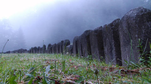 Vertical line of rocks discovered in a forest covered by dense fog 01 Footage