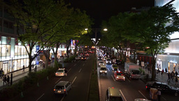 Tokyo shopping district Omotesando avenue of Japan Footage