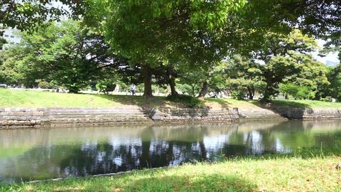 River fresh green flows through the refreshing park Footage