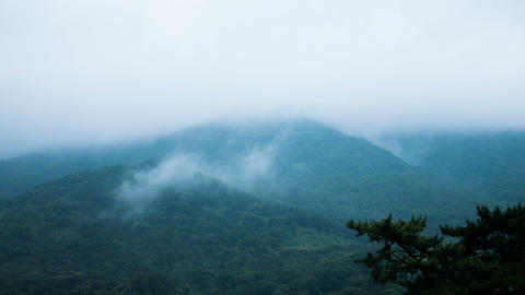Foggy Mountain Timelapse Footage