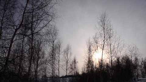 Sunset over the hills and valleys covered with snow and bare trees cold 01 Footage