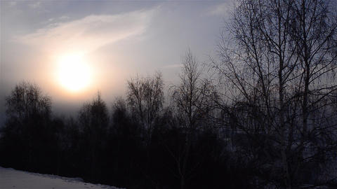 Sunset over the hills and valleys covered with snow and bare trees cold 02 Footage