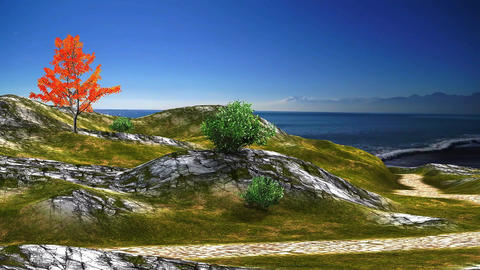 15 3D animated landscape of path to sea with blue sky and ocean Animation