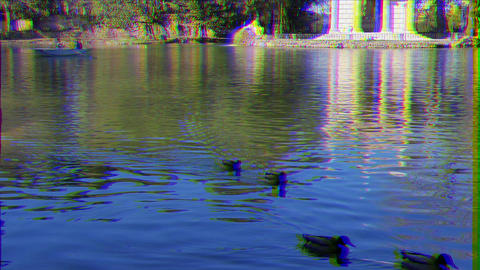 Glitch effect. Drakes on the Pond. Temple of Asclepius, Villa Borghese, Rome, Italy ビデオ