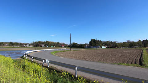 Country road on a sunny day ビデオ