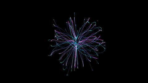 abstract particles fiber optic & cable lines in space Stock Video Footage