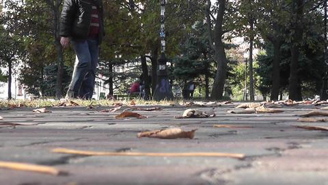 autumn park 03 Stock Video Footage
