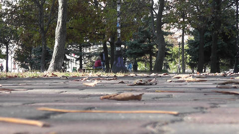 autumn park 05 Stock Video Footage