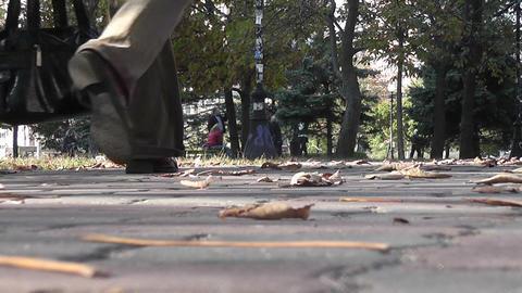 autumn park 07 Stock Video Footage