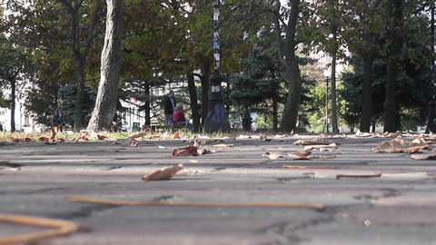 autumn park 09 Stock Video Footage