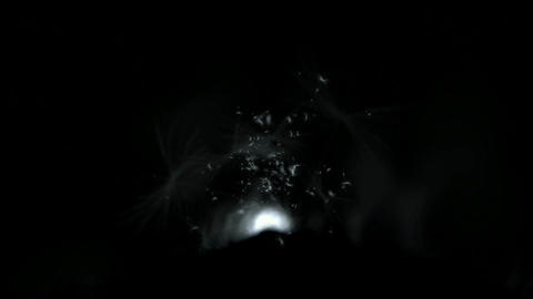 power explosion with rays light,flying dandelion &... Stock Video Footage